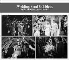 Wedding Send Off Ideas 43 Best Wedding Send Off Ideas Images On Pinterest Wedding Send