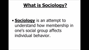 definition of sociology youtube