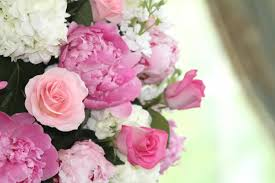 southern new jersey wedding florists reviews for 95 florists