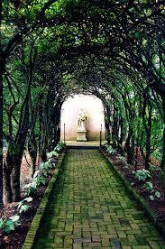 redwood forest wedding venue redwood national park wedding venues tbrb info tbrb info