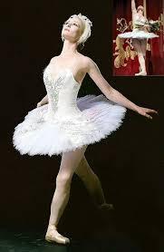 White Swan Halloween Costume White Swan Tutu Silver Iridescent Edged Embellished Wings