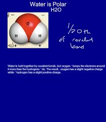 1 to learn about the characteristic properties of water 2 to