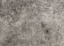 Mold On Basement Walls Cinder Block - removing black mold inside behind and on walls a full guide