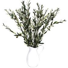 Branches In A Vase Olive Tree Topiary Wayfair
