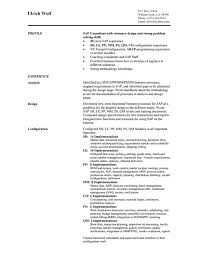 Sap Sd Resume Sample by 10 Consultant Resume Templates Free Word Pdf Samples