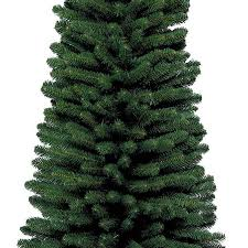 kaemingk everlands pencil pine tree 7ft charlies direct