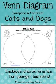 cats and dogs venn diagram worksheet venn diagrams dog and venn