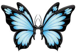 butterfly whimsical mix temporary tatt me temporary tattoos