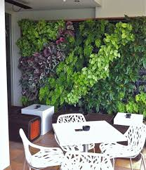 vertical gardens sydney green walls growing well