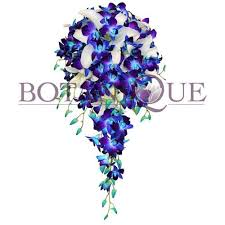 wedding flowers gold coast 29 best bouquets images on blue orchid bouquet