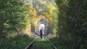 walking away on abandoned railway autumn colored trees