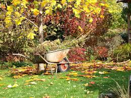 cura giardino cura giardino pratiche per prepararsi all autunno ville casali