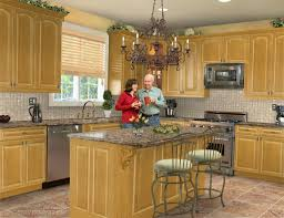 Lowes Kitchen Design Software by Lovable Impression Kitchen Cabinet Door Hinges Kitchen