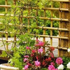 Trellis Garden Ideas 25 Beautiful Diy Trellis For Small Garden Home Design And Interior