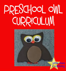 Owl Theme by Little Stars Learning Preschool Owl Theme Curriculum