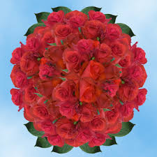send roses online stem roses bulk fresh cut roses send roses online