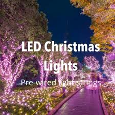 christmas lights make your celebrations sparkle all year