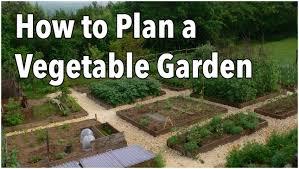 How To Design Your Backyard Backyards Stupendous How To Plan A Vegetable Garden Design Your