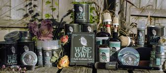 welcome wise owl chalk synthesis paint