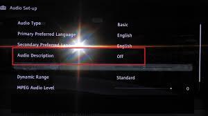 how do you turn off audio description sony