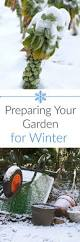 3176 best gardening tips and pics images on pinterest organic