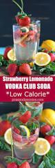 best 25 vodka lemonade drinks ideas on pinterest alcoholic