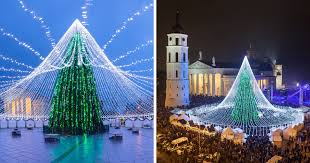 unique tree illuminated by 50 000 lightbulbs opens festive
