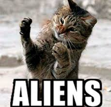 Cat Alien Meme - aliens meme cat keywords and pictures