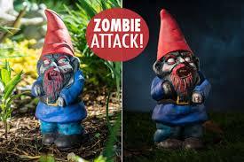 garden gnome a reanimated lawn ornament