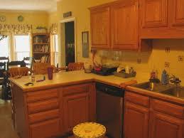 best kitchen paint colors with oak cabinets u2014 home design ideas