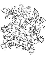 coloring pictures of flowers to print flowers colouring pages 708