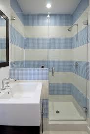 Blue Tiles Bathroom Ideas 219 Best Blue Tile Images On Pinterest Blue Tiles Bathroom