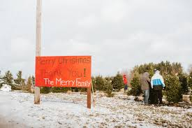 merry farms jane u0026 jury