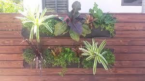 Indoor Herb Garden Kit Indoor Herb Garden Kit Technique Miami Tropical Spaces Image Ideas