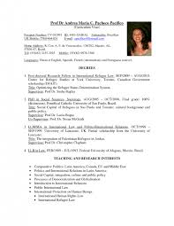 exles of resume titles charming meaning of cv resume title photos exle resume and