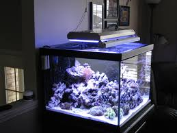 Reef Aquarium Lighting Led Lighting Diy Led Aquarium Light Bar Diy Led Aquarium