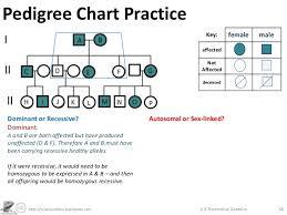 genetics practice problems pedigree tables theoretical genetics