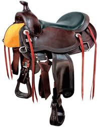 horse saddle a buyer u0027s guide to trail saddles the horse owner u0027s resource