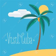with palm tree in cuba vector illustration traditional