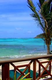 The Dining Room At Little Palm Island by 127 Best Palm Island Images On Pinterest Grenadines Palms And