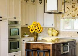 Low Price Kitchen Cabinets Kitchen Amusing Kitchen Cabinet Replacement Average Cost