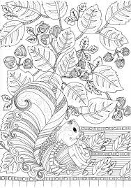 coloring page autumn mushrooms 7