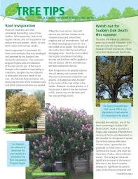 bartlett tree experts current tree tips newsletter tree tips