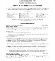 Technical Project Manager Resume Download It Project Manager Resume Haadyaooverbayresort Com