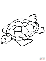 turtle coloring pictures to print free printable pages for kids