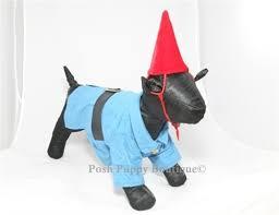 Lawn Gnome Halloween Costume Garden Gnome Dog Costume Costumes Posh Puppy Boutique