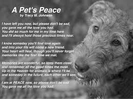 the loss of a pet loss pet poems