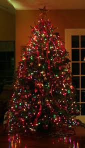 best indoor christmas tree lights decorated christmas trees with multicolor lights my web value