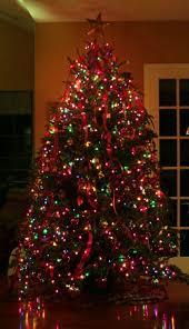 real mini christmas tree with lights colored christmas tree lights happy holidays