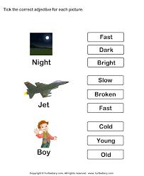 choose the best adjective turtlediary com starters